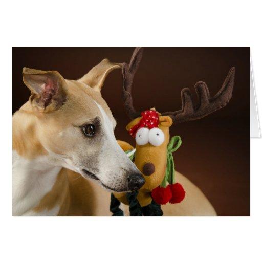 Whippet Christmas card Karte