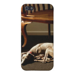 Case Savvy iPhone 5 Matte Finish Case with Whippet Phone Cases design