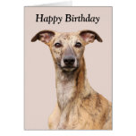 Whippet dog beautiful photo happy birthday card