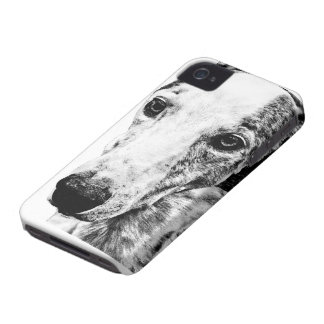 Whippet dog blackberry bold case