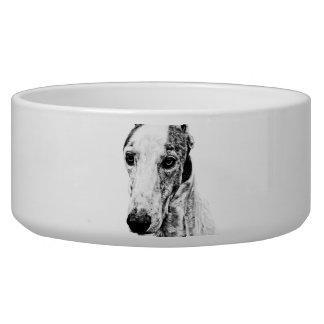 Whippet dog bowl