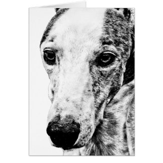 Whippet dog cards