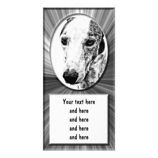 Whippet dog customized photo card