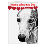 Whippet dog greeting card