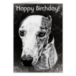Whippet dog greeting cards
