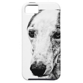 Whippet dog iPhone 5 cases