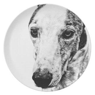 Whippet dog melamine plate