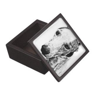 Whippet dog premium trinket box
