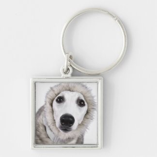 Whippet dog wearing fur coat, studio shot Silver-Colored square keychain