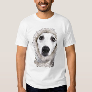 Whippet dog wearing fur coat, studio shot tee shirt