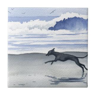 Whippet en la playa azulejo cuadrado pequeño