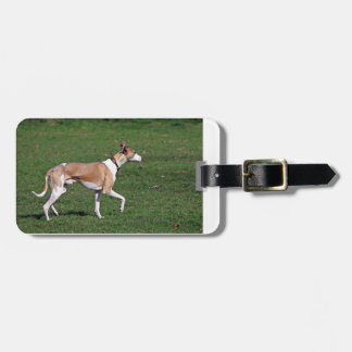whippet-full.png luggage tag