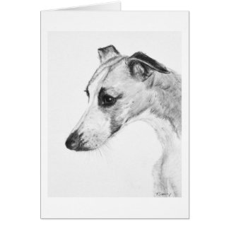 Whippet Profile Card