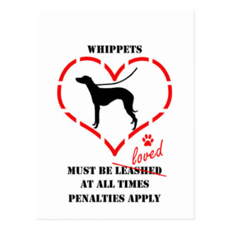 Whippets Must Be Loved Postcard