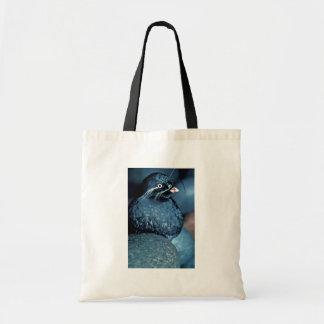 Whiskered Auklet Bag