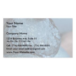 Whiskered Auklet Business Card