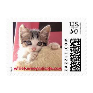 whiskers' toy cat postage stamp