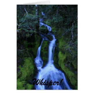 Whisper Card