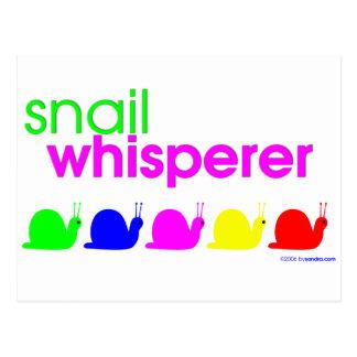 Whisperer del caracol tarjetas postales