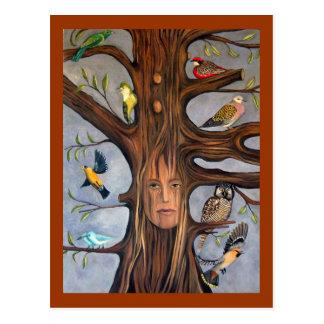 Whisperer del pájaro postales