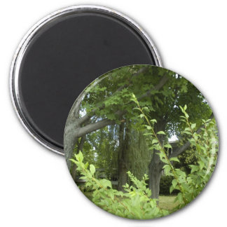 Whispering Greens - the Mystery Beyond 2 Inch Round Magnet