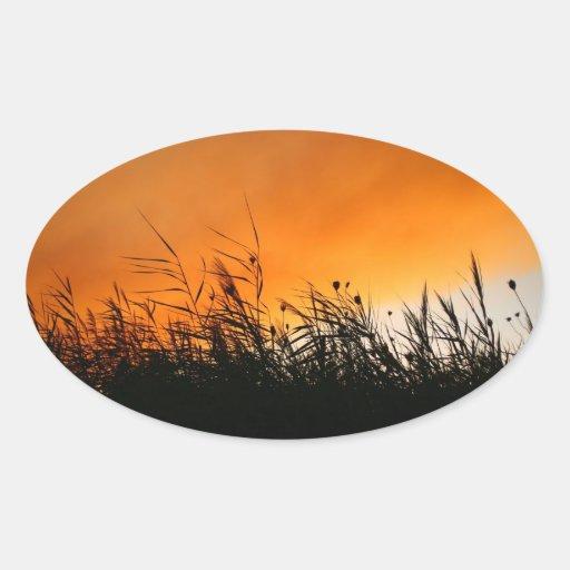 Whispering Reeds At Smokey Sunset Oval Sticker