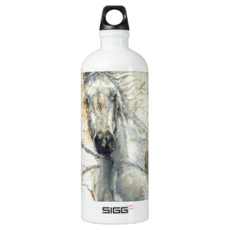 Whispers Across the Steppe Water Bottle