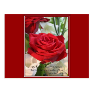 Whispers of  Love Postcard