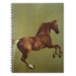 Whistlejacket, 1762 note book