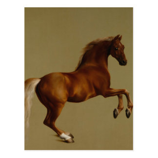 Whistlejacket Race Horse by George Stubbs Postcard