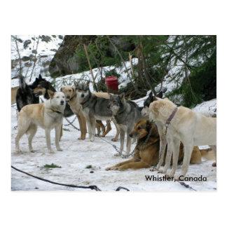Whistler, Canada Post Card