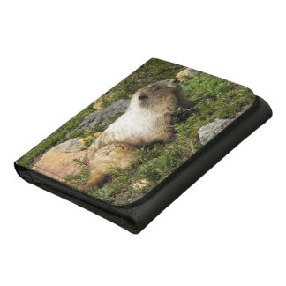 Whistling Marmot Photo Leather Wallets