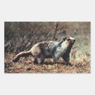 Whistling Marmot Rectangle Sticker