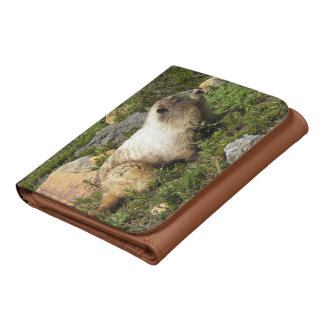 Whistling Marmot Tri-Fold Wallet