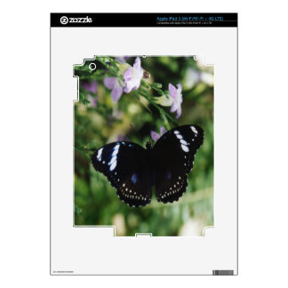 White Admira Butterflyl .jpg iPad 3 Decal