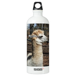 White Adult Alpaca - Vicugna pacos Water Bottle