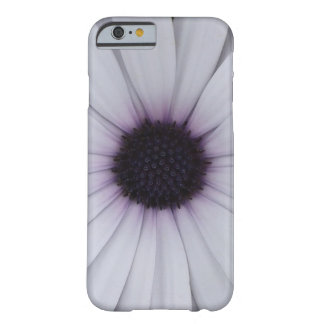 White African Daisy Barely There iPhone 6 Case