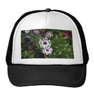 White African Daisy Trucker Hat