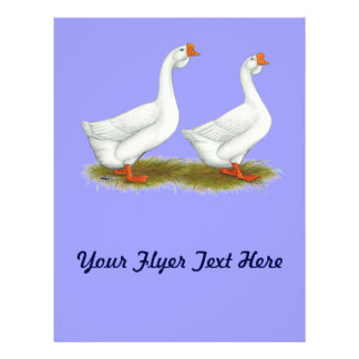 White African Geese Flyers