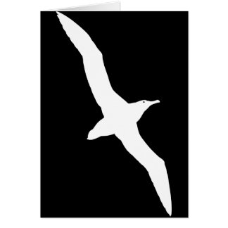 White Albatross Bird In Flight Greeting Card