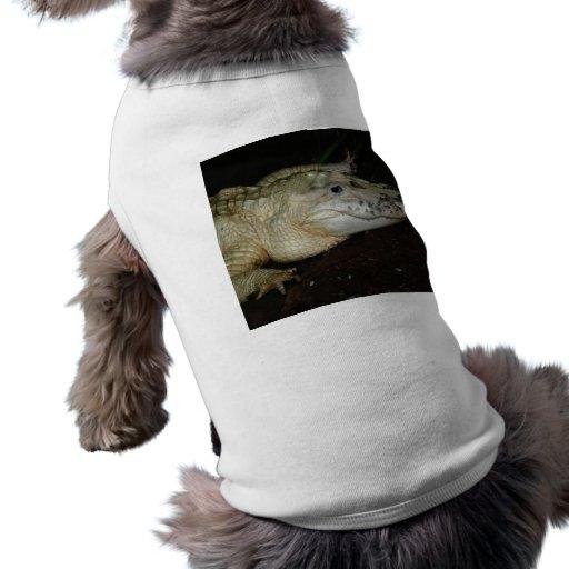 White Albino Alligator Photo , Gator  Image Pet Tshirt