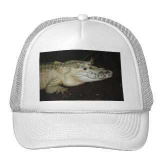White Albino Alligator Photo , Gator  Image Trucker Hats