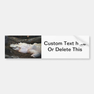 white albino alligator watercolor style image bumper sticker