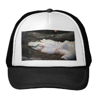 white albino alligator watercolor style image trucker hat