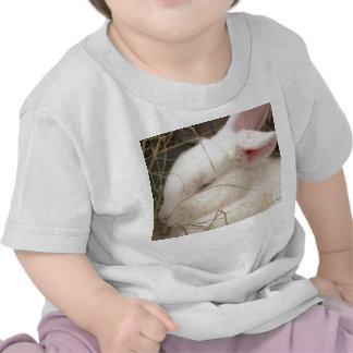 White albino netherland dwarf rabbit head tee shirts