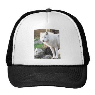 White albino wolf spirit - Therian gifts Trucker Hat