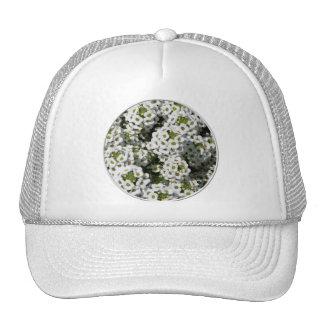 White Alyssum Trucker Hat