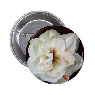 White Amaryllis Pinback Button