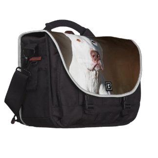 White American Pitbull Terrier Rescue Dog Laptop Bag