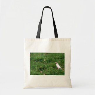 White American robin Canvas Bag